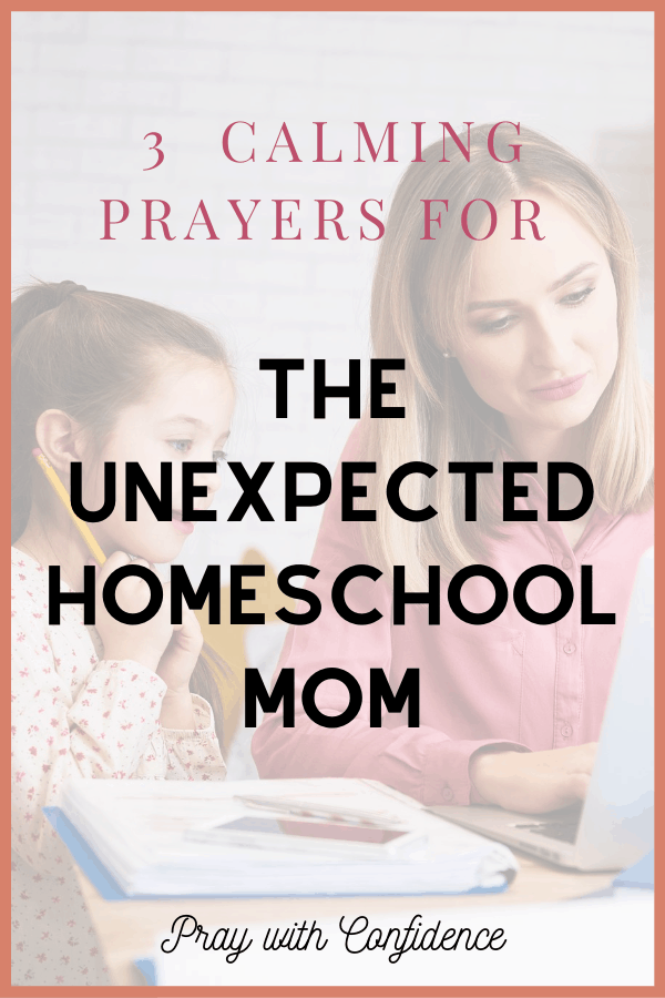 unexpected homeschool mom